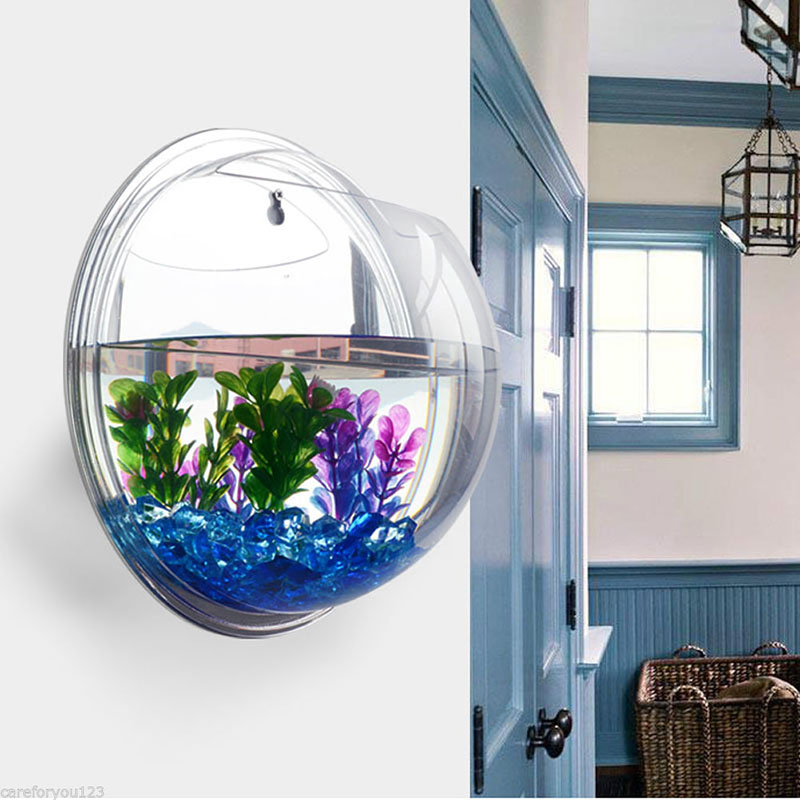 Semicircular and Wall Hanging Terrarium Vase for Growing Hydroponic Plants and Flower Indoor 11