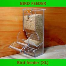 Инструменты для птиц, автоматические кормушки для птиц, оборудование для птиц, диетические инструменты, маленькая кормушка для птиц, прозрачные новые контейнеры для еды для птиц