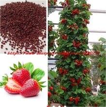 Zahradní produkty