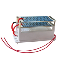 Sterilize CE 110V 220V Home Air Filter 10g Selfcleaning Ozonio Generator Air Purifier Ionizer FQM P10000