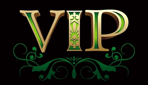 VIP BID LINK-in T-Shirts from Men's Clothing    1
