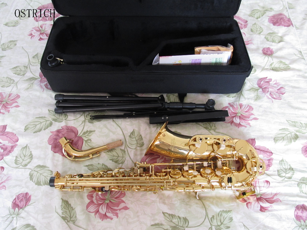 2018 New Ostrich style Professional Gold Alto Saxophone With Silver Plated Key Sax Case + Gift