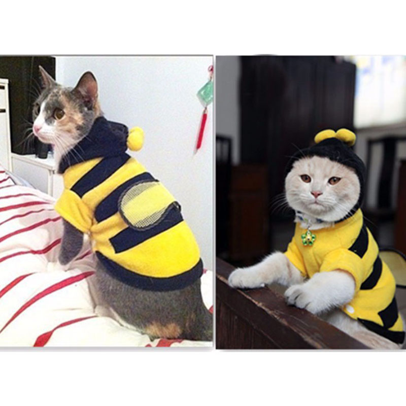 1Pcs בגדים לחיות מחמד דבורים חמוד כלב חתול בגדים רך פליס טדי פודל כלב ביגוד מוצרים לחיות מחמד אביזרים 7z-ca217