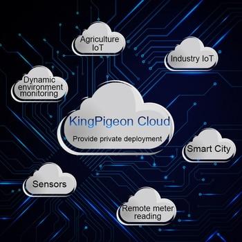 מלך היונה ענן פלטפורמת V3.0 תמיכה APP אינטרנט בזמן אמת ניטור נתונים רכישת להתאמה אישית