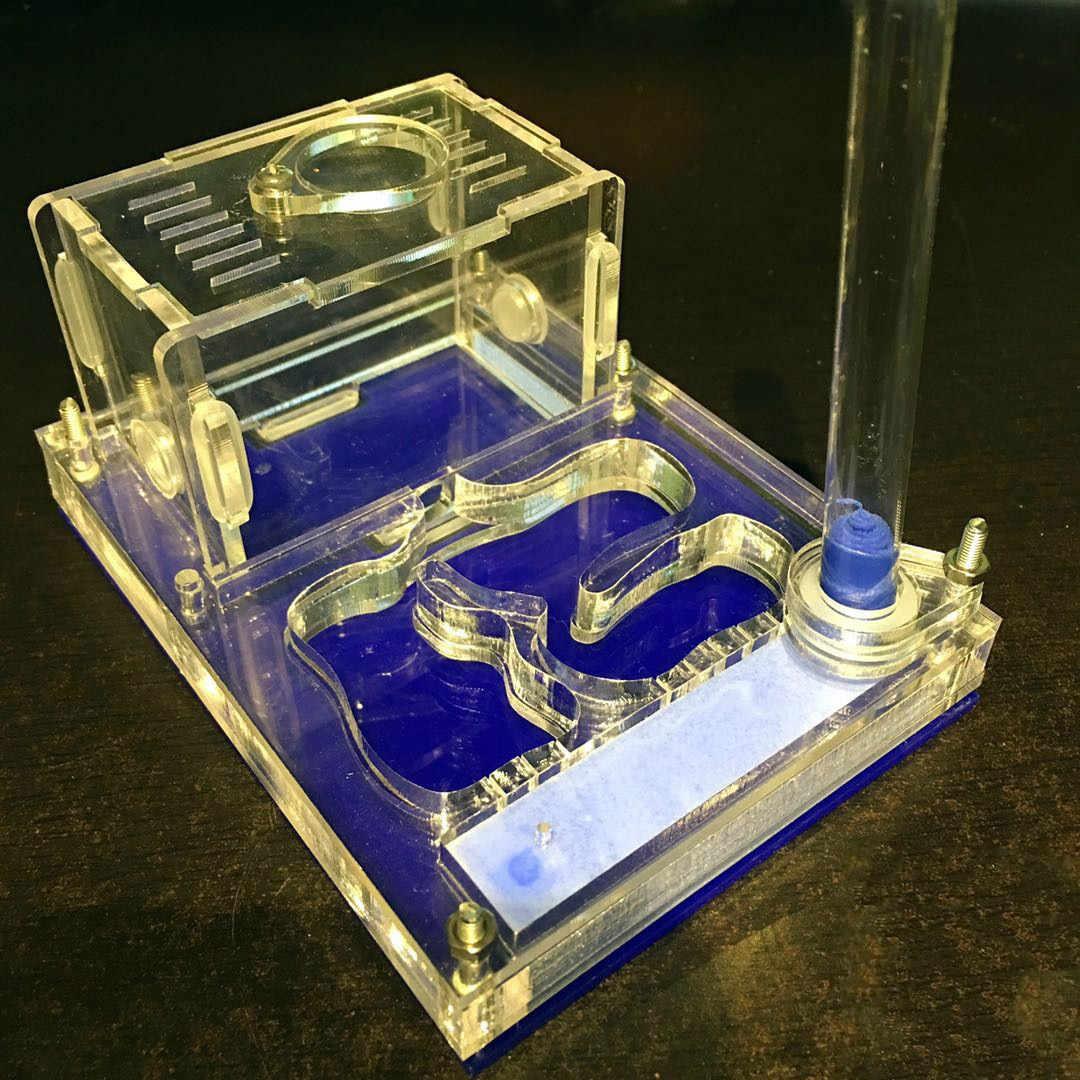 1 PCS แบนอะคริลิค Ant Nest (Water Tower Edition) โต๊ะตกแต่งแมลงกล่องมด Farm House