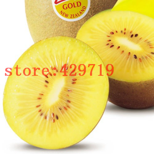 200pcs imported Thailand Gold Yellow Kiwi fruit seeds Vegetable and Fruit   seed For DIY Home plant NO-GMO can eat for kid gift