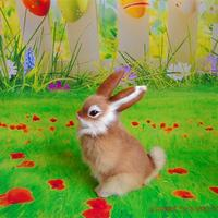 Cute Simulation Sitting Rabbit Model Toy Polyethylene Furs Yellow Rabbit Doll Gift About 16x22cm 282