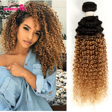 3/4 Pcs Ombre Malaysian Kinky Curly Hair Bundles Two Tone Honey Blonde Human Hair Bundles Deals Color 1B/27#(China)