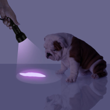 Uv Led Flashlight 51 Leds 395nm Ultra Violet Torch Light Lamp Blacklight Detector for Dog Urine Pet Stains and Bed Bug