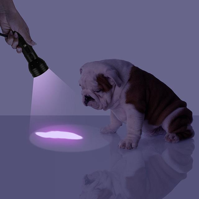 Uv Led Flashlight 51 Leds 395nm Ultra Violet Torch Light Lamp Blacklight Detector for Dog Urine Pet Stains and Bed Bug