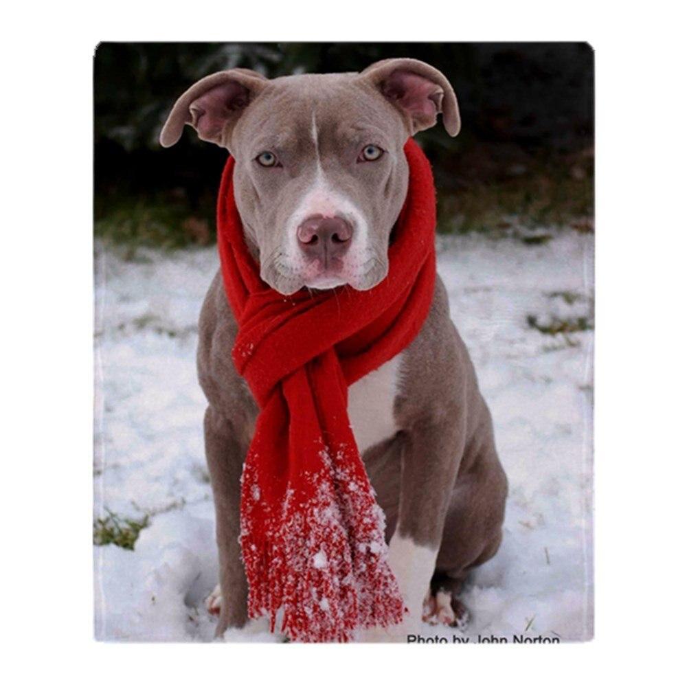 Праздник Питбуль С красный шарф из мягкого флиса Пледы Одеяло теплый коралловый флис Одеяла на кровать Пледы постельное белье