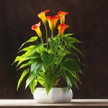 Wholesale 100 pcs -Calla Bouquet (18pcs Leaves+3pcs Flowers +Roots) Touch Flower Calla Wedding Flower Table Flower Free Shipping цена