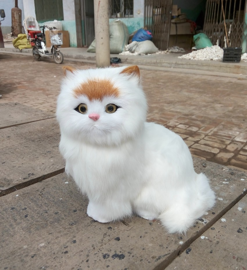 large 24x24 cm simulation white cat with yellow head,cat Model ,lifelike,big head squatting cat model decoration t187 simulation cute squatting white cat 35x15cm model polyethylene