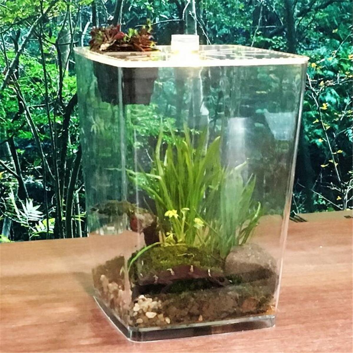 Reptile Acrylique Plante Terrarium Réservoir D'alimentation Insectes Serpent Araignées Caméléon Boîtes de Reproduction Transparent Cage Cas Maison