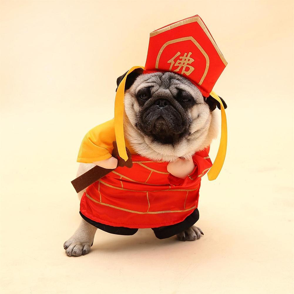 funny dog costumes - 1001×1001
