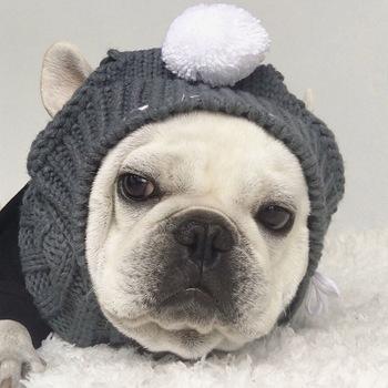 Zimowe czapki dla psów na boże narodzenie z pieskiem czapki kostiumy akcesoria dla psów wełniana czapka z daszkiem z kulką nakrycia głowy dla małych psów buldog francuski tanie i dobre opinie WANGMEOW Stałe Z wełny CH1075 Small Medium Dog Chihuahua Yorkshire Pets Products Dog Supplies Dog Accessories Pet Hat