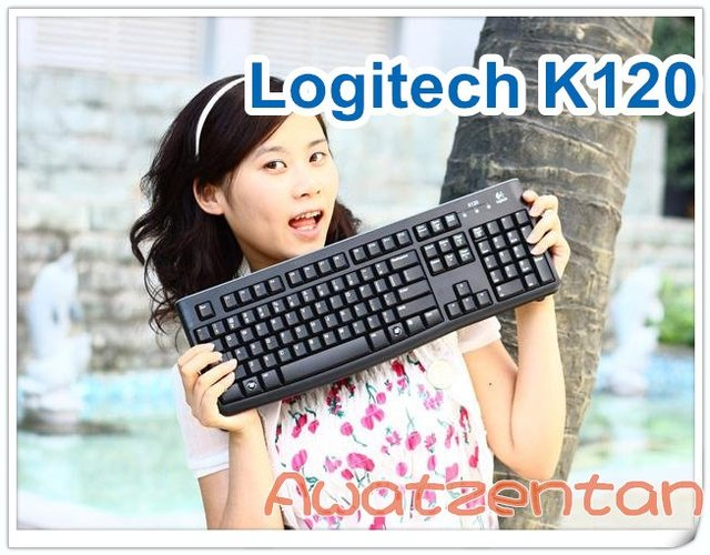 Free Shipping Great Condition Logitech K120 Logitech Keyboard W/USB Plug & Cable Logitech wireless mouse optical mouse