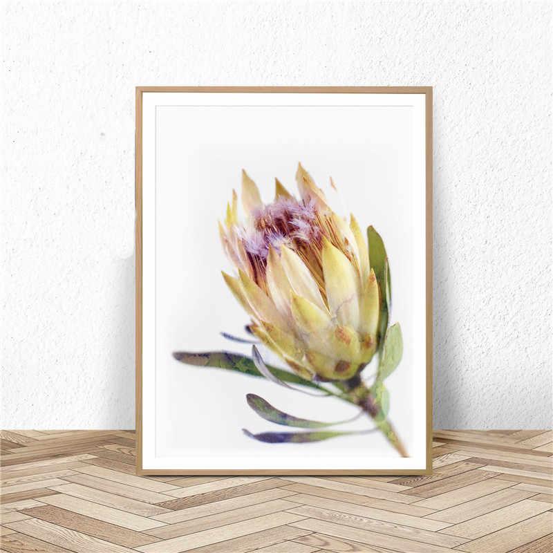 Australian Blume Poster und Drucke Protea Wand Kunst Aquarell Leinwand Malerei Gelb Blumen Druck Wand Bild Home Decor