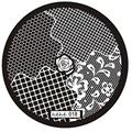 2016 Most Popular Steel plate New Hehe Series Nail Art Image Stamp Stamping Plates Manicure Template Anne