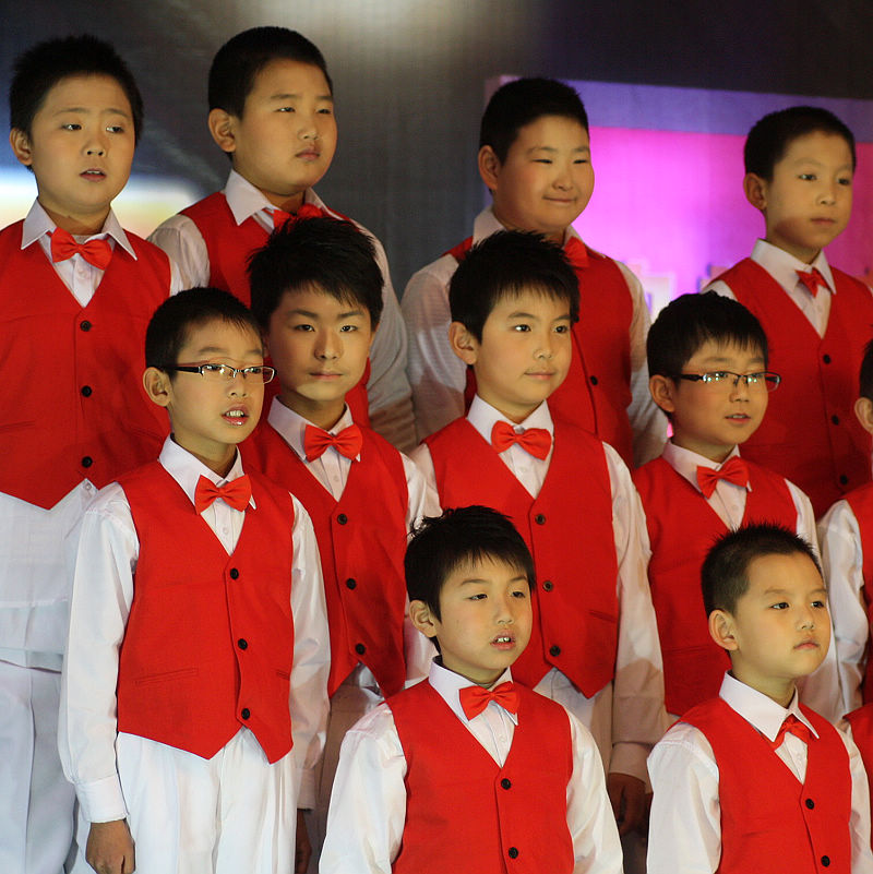 Children's Chorus Performances Red Suit Vest Boy Stage Performance Clothing Red Waistcoat Children's Vest Free Shipping