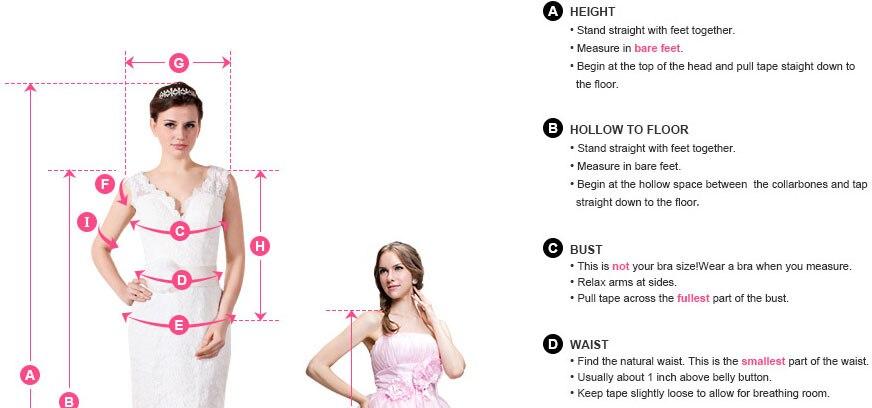 1.Model's Measurements