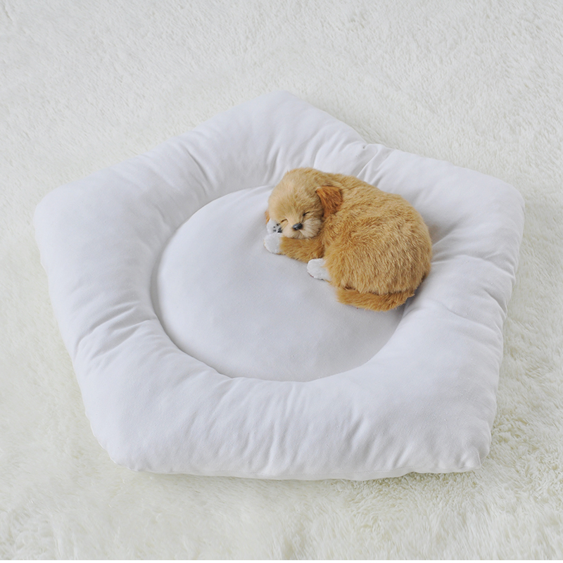 Dog Cat Pet Teepee Tipi Tent Tee Pee Cushion Dog Cushion 20 (Cushion only,Without Teepee)