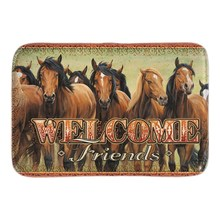 Home Decorative Doormats Welcome Friends Horse Door Mat Indoor Outdoor Mats Soft Lightness Short Plush Fabric Bathroom Mats