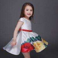2016 новых девушек платья Европа и Америка печати туту принцесса платье L-93