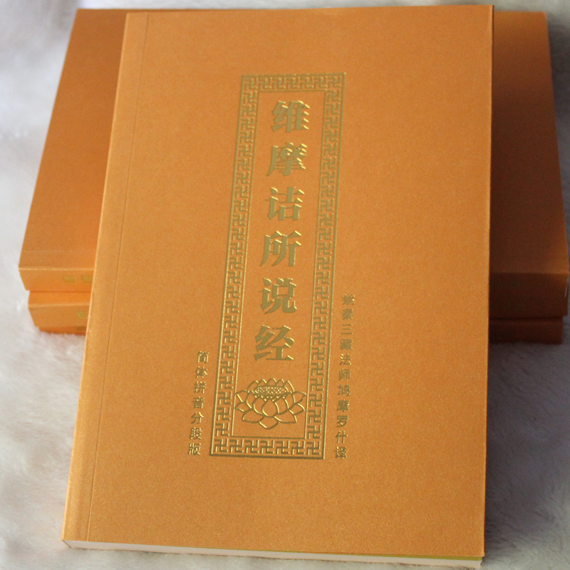 Vimalakirti Sutra With Pin Yin / Buddhist Books In Chinese Edition