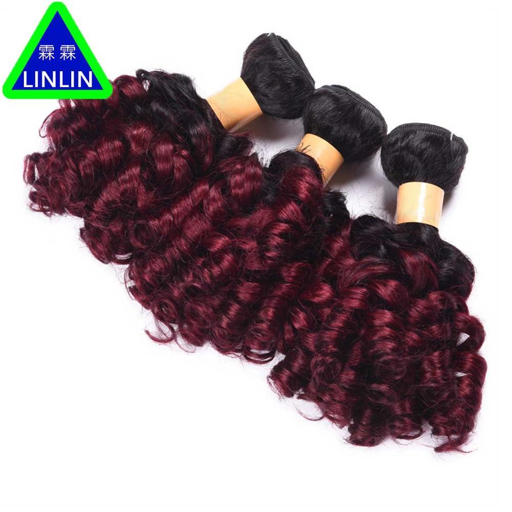 LINLIN Pre-colored Brazilian Bouncy Curly Hair Bundles 3Pcs 100% Human Hair Weave #1b/Burgundy 10