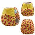 JinoBaby Fruit Aio Reusable Diapers - Stay Dry Modern Cloth Nappies