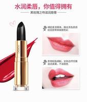 Matte Velvet Lipstick Pencil Cosmetic Long Lasting Lip Tint Pigment Makeup Nude Brown Lipstick Matte Lip stick