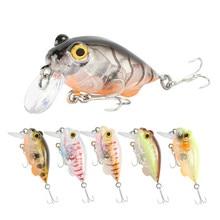 1Pcs Freshwater Mini Fishing Lure Crank Wobblers Hard Bait Insect Crankbait Carp Fishing Tackle Isca Artificial Pesca 5g 40mm цена 2017