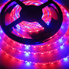 Whosale LED Grow Lights DC12V Growing LED Strip 5050 IP20 IP65 IP68 Plant Growth Light For