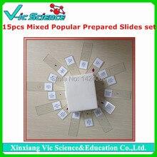 15pcs Mixed Popular Biology Prepared Slides set
