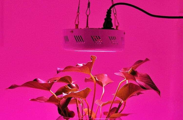3 pcs/lot UFO 150 W LED à spectre complet élèvent des lumières systèmes hydroponiques poussent des lampes LED de boîte pour la plante végétale poussent des plantes à effet de serre - 5