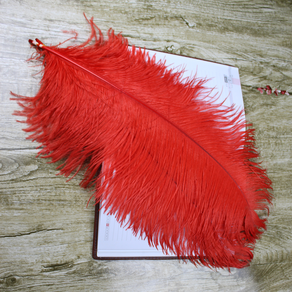 10 PCS beautiful natural red ostrich feather 50-55 cm / 20 to 22 - Arts, Crafts and Sewing - Photo 6