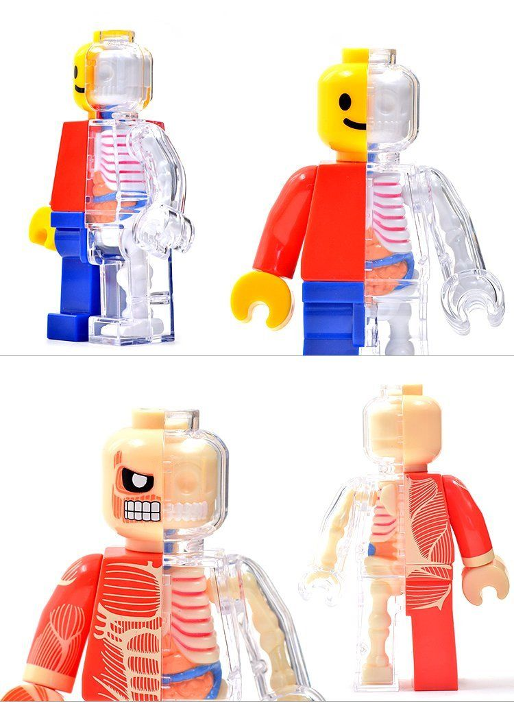 4D Master @ Jason Freeny Human Anatomy Brick Man New-in Action & Toy ...