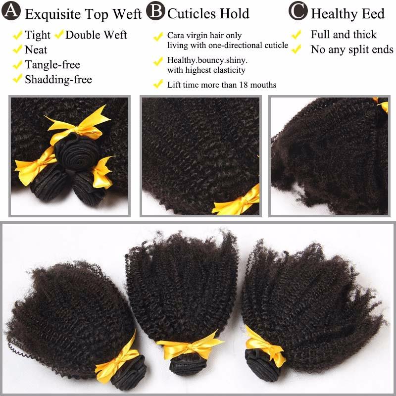 Afro Kinky Curly Virgin Human Hair  (1)