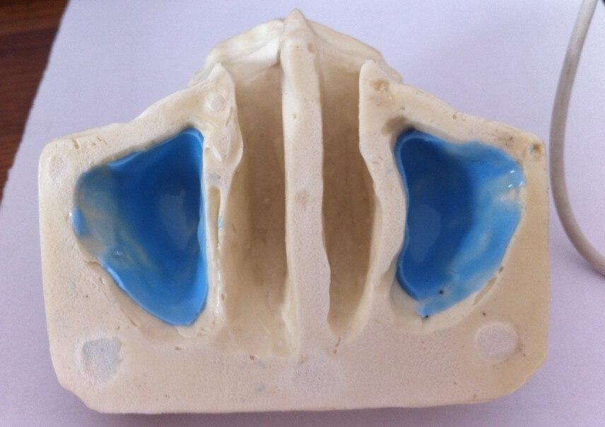 Livraison gratuite Sinus modèle de pratique pour l'éducation dents dentaires dentiste modèle d'anatomie anatomique odontologia