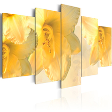 5 Panel Wall Pictures for Living Room Picture Print Painting On Canvas Art Home Decor Print/PJMT-B (60)