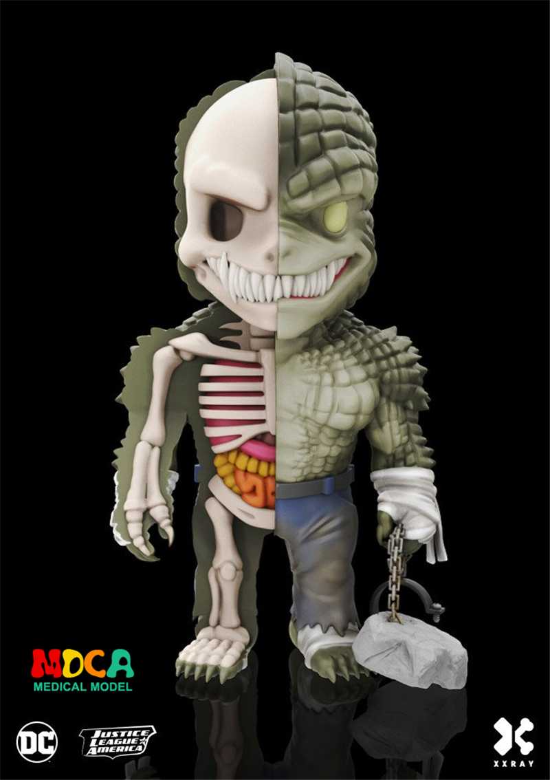 Killer Croc 4D XXRAY master Mighty Jaxx Jason Freeny anatomy Cartoon ornament robin hood 4d xxray master mighty jaxx jason freeny anatomy cartoon ornament