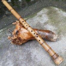 Китайский бамбуковый флейта Nan Xiao японский Shakuhachi G/F ключ вертикальный духовой Профессиональный музыкальный инструмент 8 отверстий Bambu Flauta