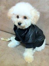 Wholesale – pet leather-based jacket, canine clothes, pet winter coat, pet attire, garments,canine fabric, pet coat, for winter
