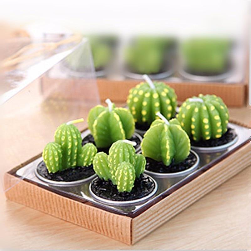 mini jardim de cactus:Mini Cactus Candles