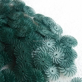 """Free Shipping Green Color Grain 80# 1"""" Jewelry 3M Bristle Brushes Radial Discs for Groove Polishing 500pcs/bag"""