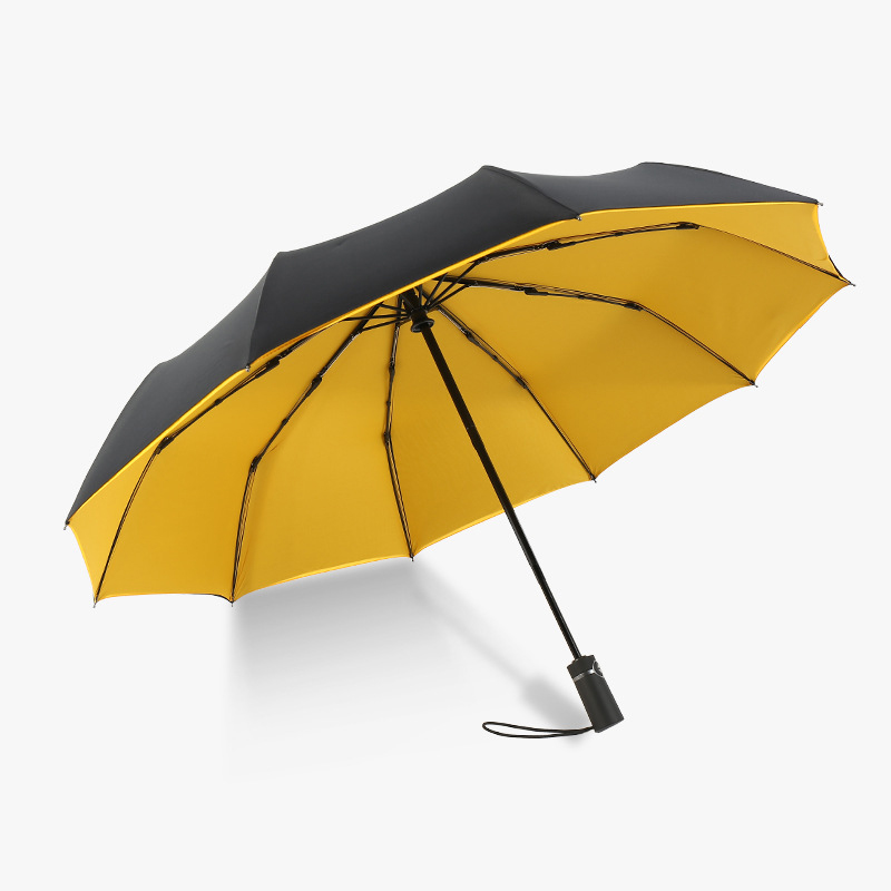 New Arrive Umbrellas Auto Open Auto Close 10 Spokes 190T Polyster For Women Gentle Duoble Camopy 23 quot Gift Windproof Compact in Umbrellas from Home amp Garden