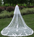 3 Meter Cathedral Wedding Veils Long Lace Appliques Bridal Veil with Comb Wedding Accessories Bride Mantilla Wedding Veil