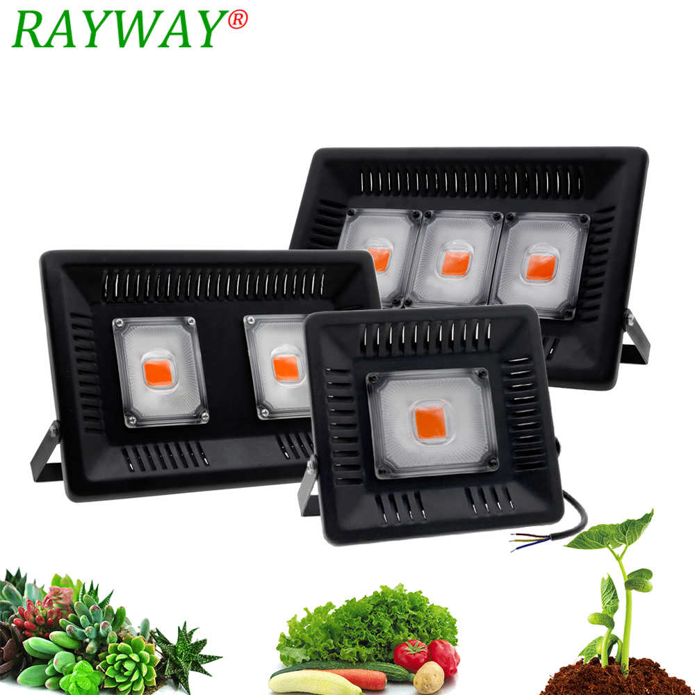 Phytolamp LED Grow Light P65 Waterproof 100W 200W 300W Full Spectrum Phyto Lamp For Flower Seeding Plant Outdoor Grow Tent