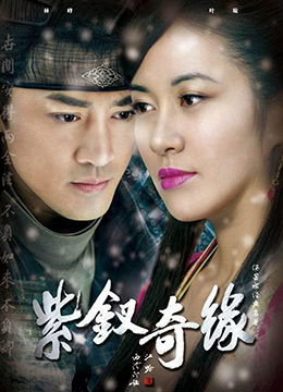 《紫钗奇缘》2013年中国大陆剧情,爱情,古装电视剧在线观看